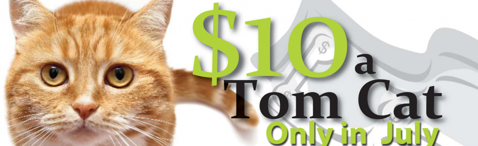 July $10 cat neuter