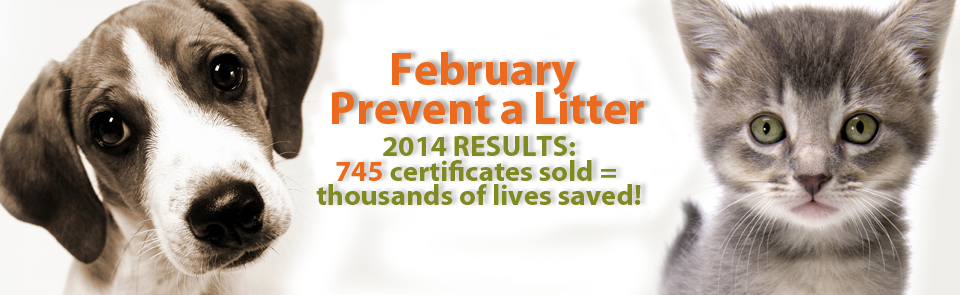 Feb. Prevent a Litter Campaign >>RESULTS