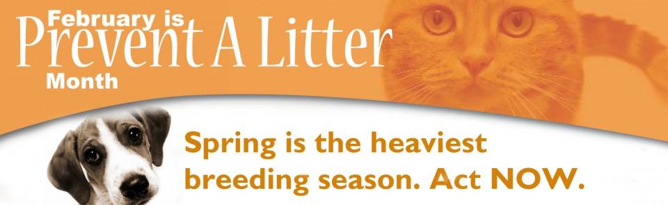 Prevent a Litter