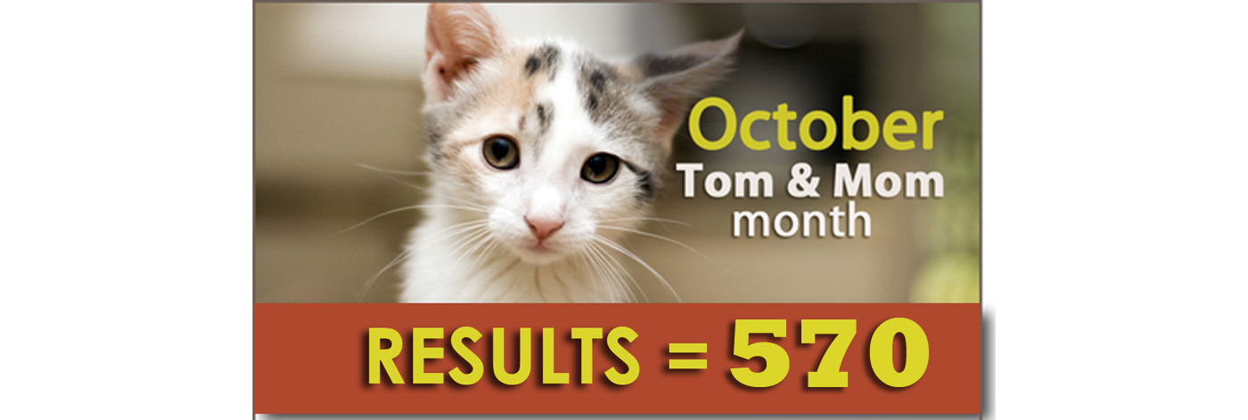 2016 Tom & Mom Results!